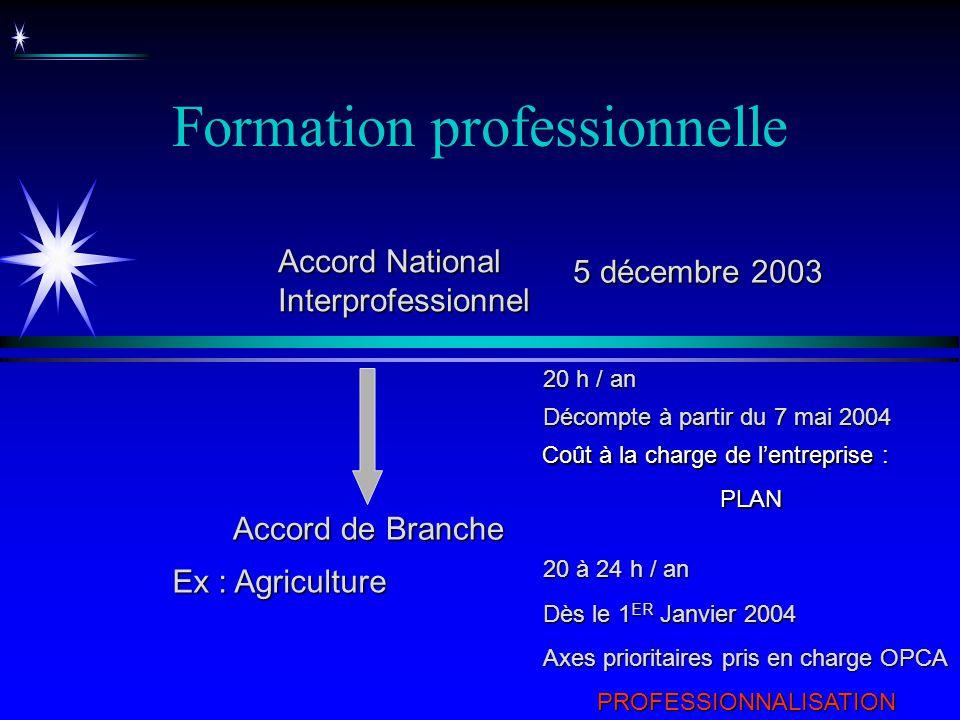 Formation professionnelle Décompte à partir du 7 mai 2004 Accord National Interprofessionnel Coût à la charge de lentreprise : PLAN 20 h / an Accord d