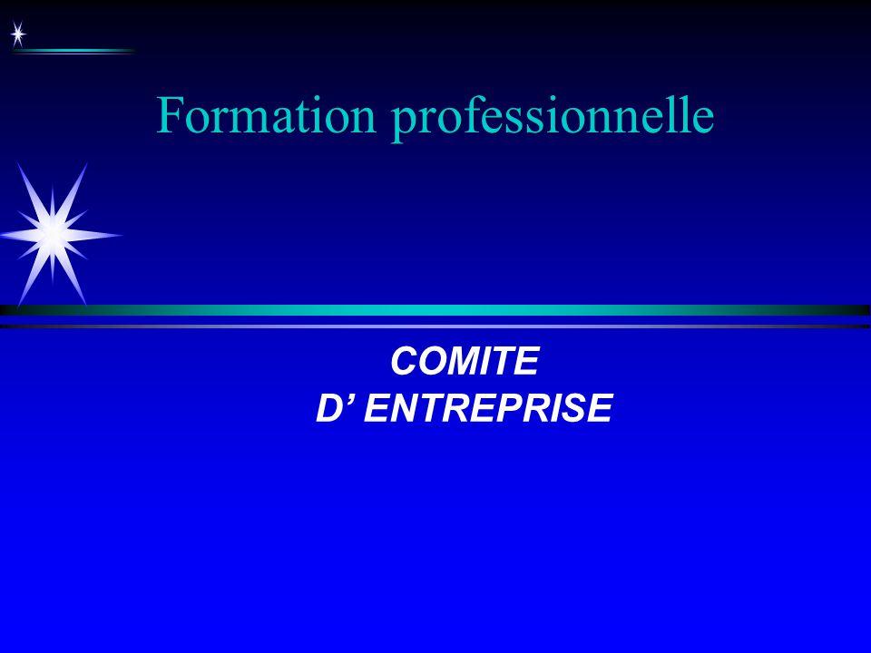 Formation professionnelle COMITE D ENTREPRISE