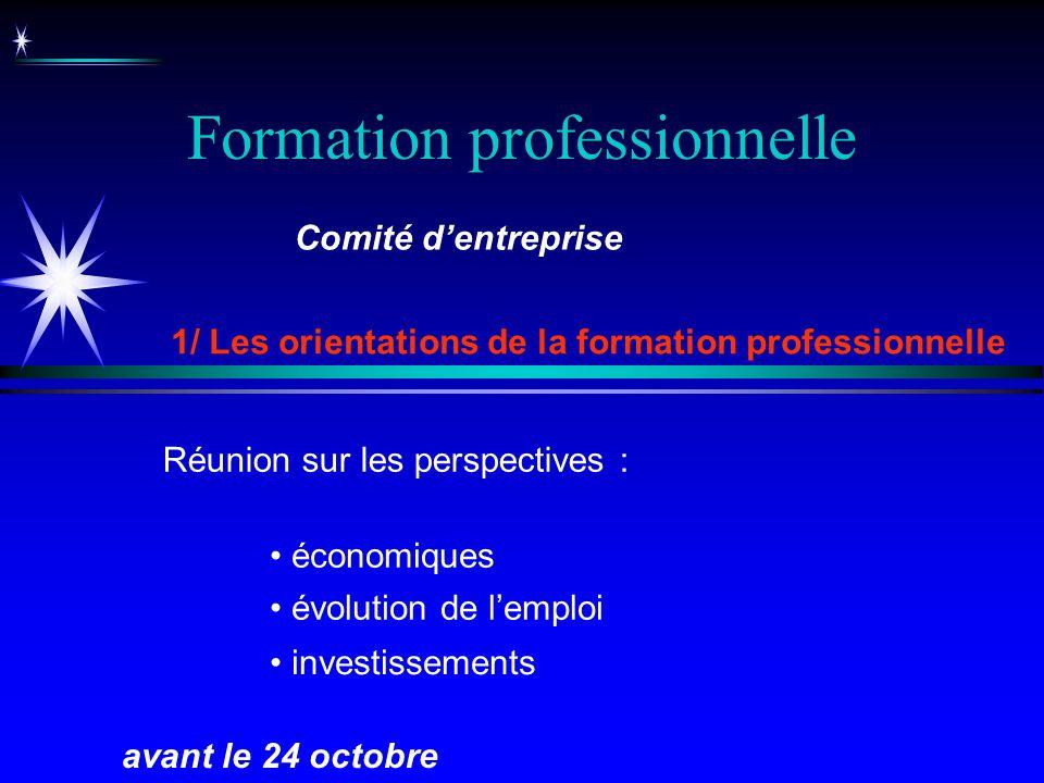 Formation professionnelle 1/ Les orientations de la formation professionnelle avant le 24 octobre Comité dentreprise évolution de lemploi Réunion sur
