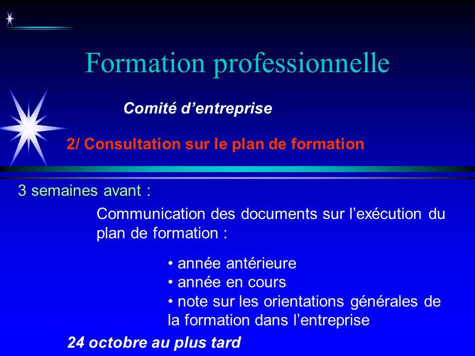 Formation professionnelle Communication des documents sur lexécution du plan de formation : année antérieure année en cours note sur les orientations
