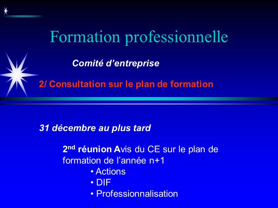 Formation professionnelle 2 nd réunion Avis du CE sur le plan de formation de lannée n+1 Actions DIF Professionnalisation Comité dentreprise 2/ Consul