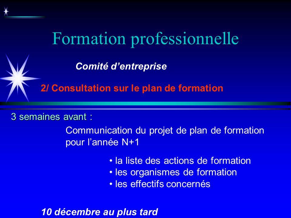 Formation professionnelle Communication du projet de plan de formation pour lannée N+1 la liste des actions de formation les organismes de formation l