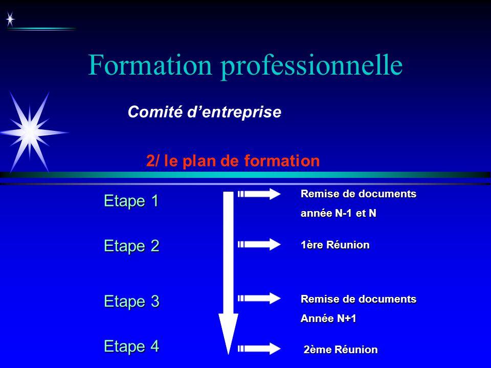 Formation professionnelle 2/ le plan de formation Comité dentreprise Remise de documents année N-1 et N Remise de documents Année N+1 1ère Réunion 2èm