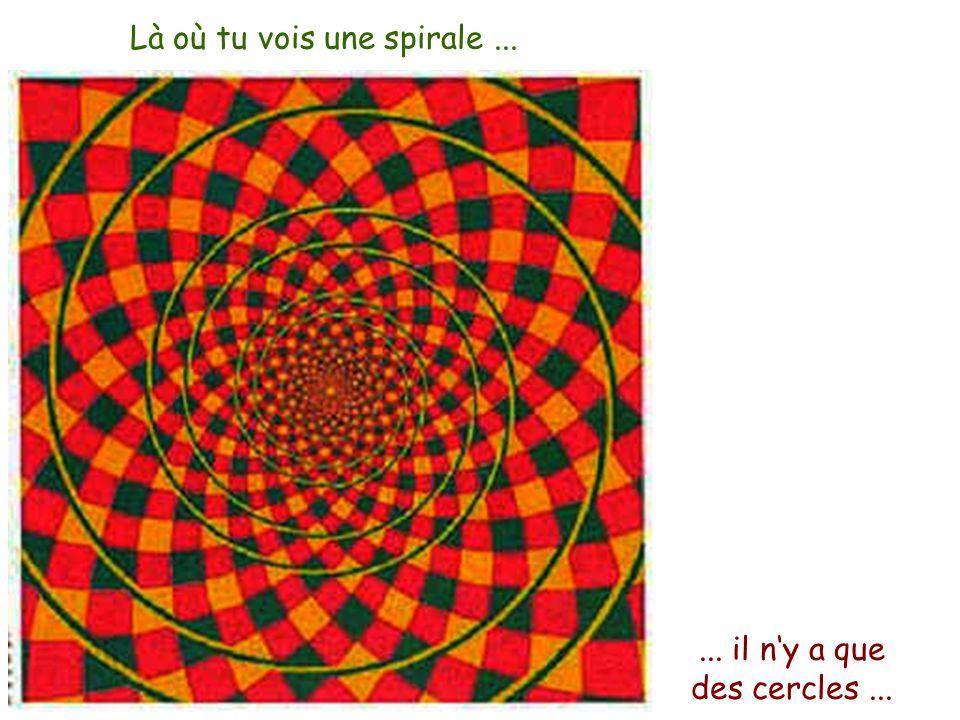 Là où tu vois une spirale...... il ny a que des cercles...