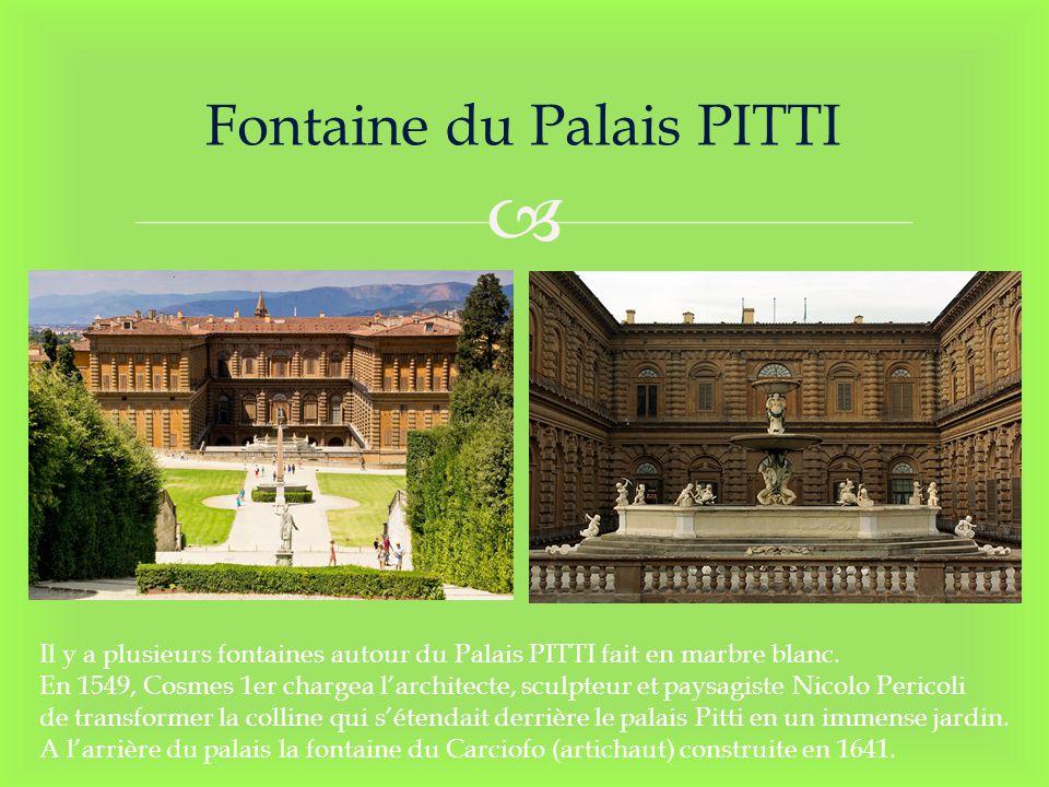 Fontaine du Palais PITTI Il y a plusieurs fontaines autour du Palais PITTI fait en marbre blanc. En 1549, Cosmes 1er chargea larchitecte, sculpteur et
