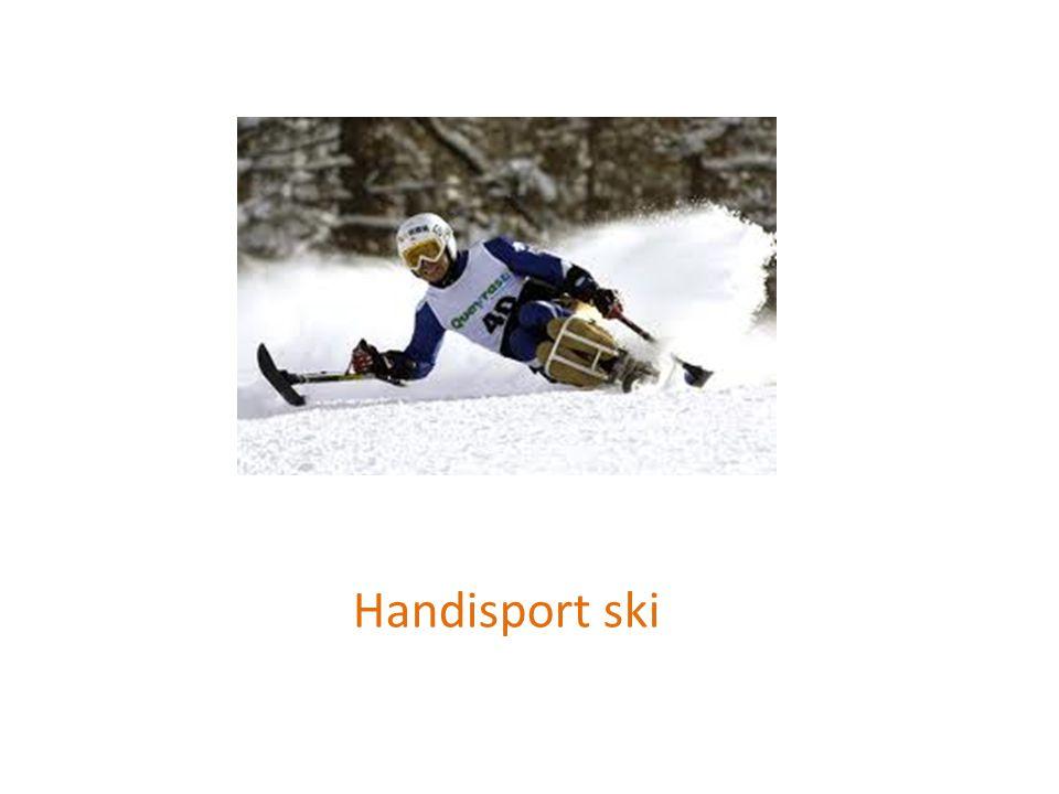 Handisport ski
