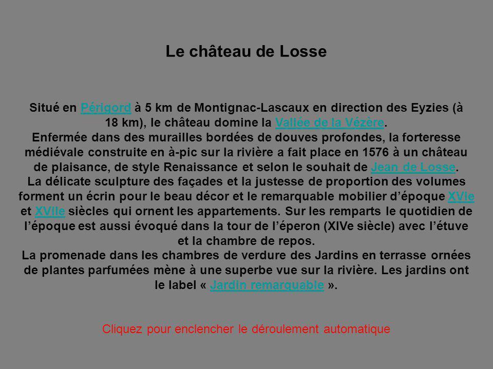 LE CHÂTEAU DE LOSSE PPS N° 1 / 2 JARDINS ET DEPENDANCES Cliquer pour avancer DANS LE DEPARTEMENT DE LA DORDOGNE Photo du Net