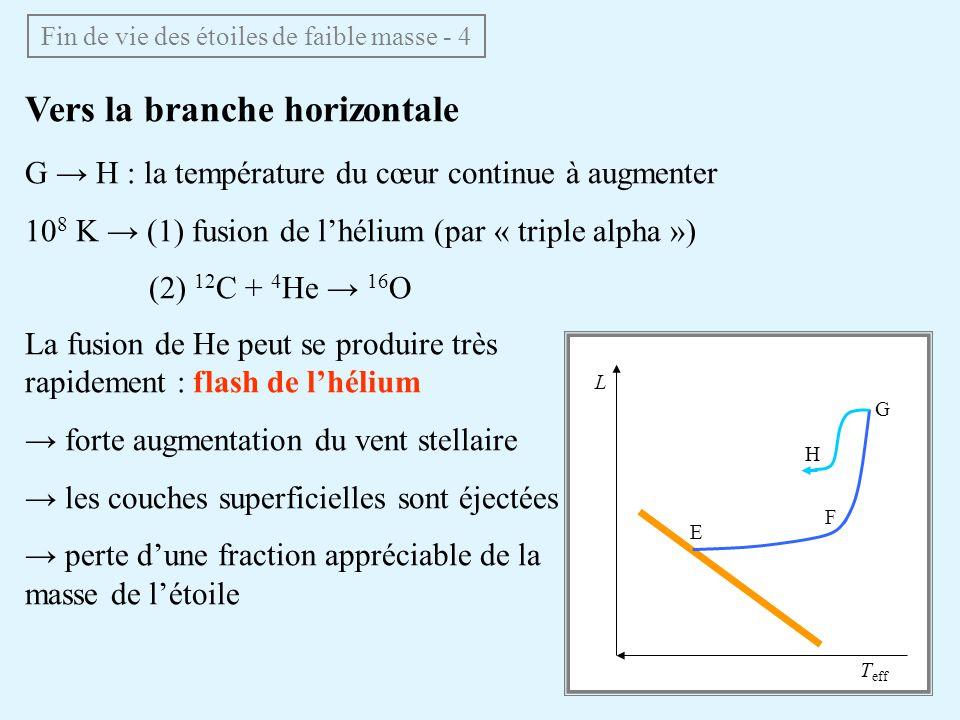 Vers la branche horizontale G H : la température du cœur continue à augmenter 10 8 K (1) fusion de lhélium (par « triple alpha ») (2) 12 C + 4 He 16 O