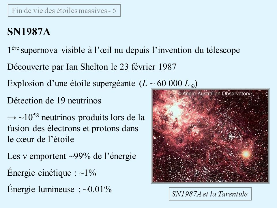 Fin de vie des étoiles massives - 5 SN1987A 1 ère supernova visible à lœil nu depuis linvention du télescope Découverte par Ian Shelton le 23 février
