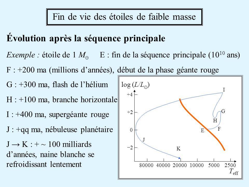 Vers la branche des géantes rouges E F : Version amplifiée de lévolution sur la séquence principale laccumulation dhélium dans le cœur gène la fusion de lhydrogène la pression centrale baisse contraction du cœur T augmente Fin de vie des étoiles de faible masse - 2 (1) il y a plus de matière dans le cœur (2) le taux de réaction augmente L naugmente pas immédiatement car le surplus dénergie est trop brusque pour apparaître immédiatement en surface accumulation dénergie à lintérieur les couches extérieures se dilatent T eff diminue à L constante L T eff E F