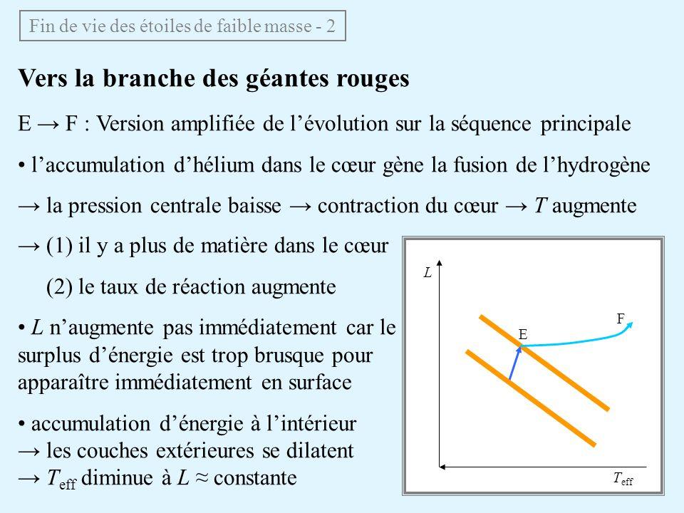 Vers la branche des géantes rouges E F : Version amplifiée de lévolution sur la séquence principale laccumulation dhélium dans le cœur gène la fusion
