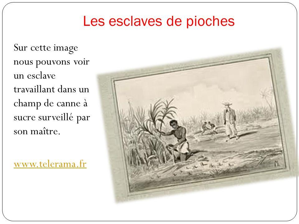 Les esclaves de pioches Sur cette image nous pouvons voir un esclave travaillant dans un champ de canne à sucre surveillé par son maître.