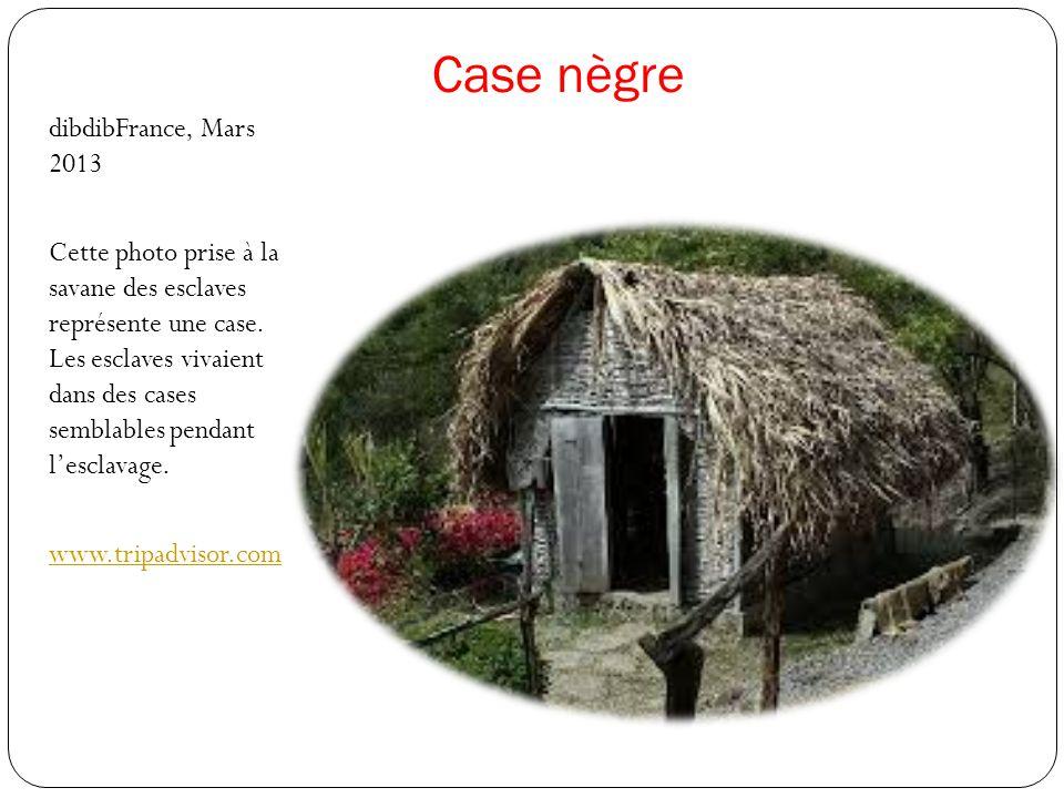 Case nègre dibdibFrance, Mars 2013 Cette photo prise à la savane des esclaves représente une case. Les esclaves vivaient dans des cases semblables pen