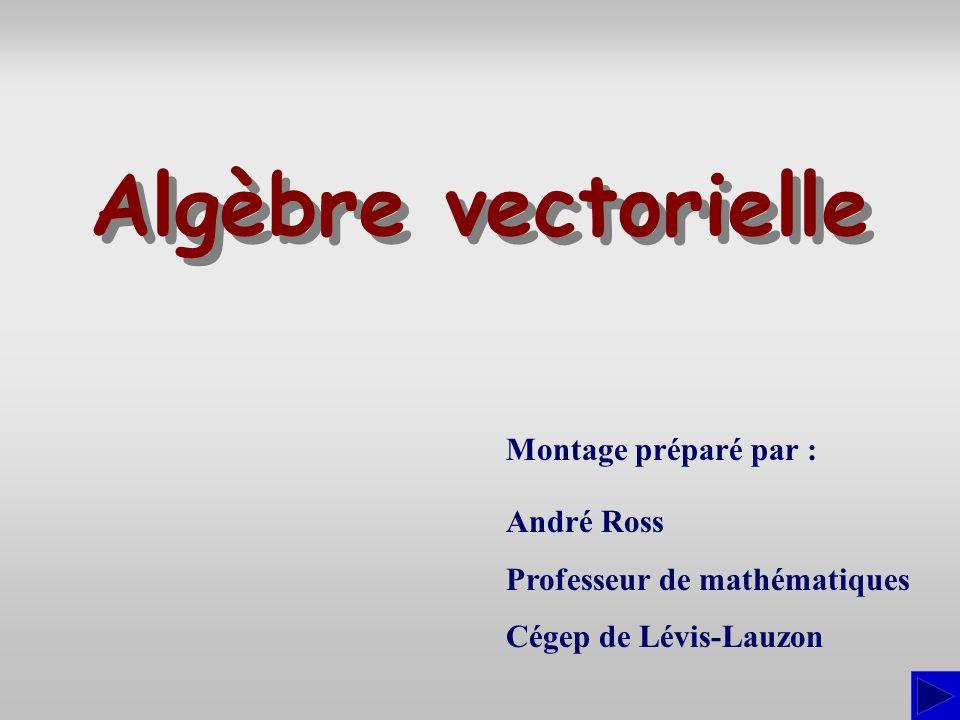 Montage préparé par : André Ross Professeur de mathématiques Cégep de Lévis-Lauzon Algèbre vectorielle Algèbre vectorielle