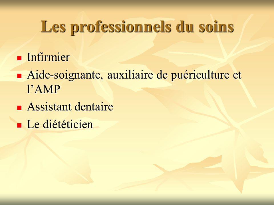 Les professionnels du soins Infirmier Infirmier Aide-soignante, auxiliaire de puériculture et lAMP Aide-soignante, auxiliaire de puériculture et lAMP