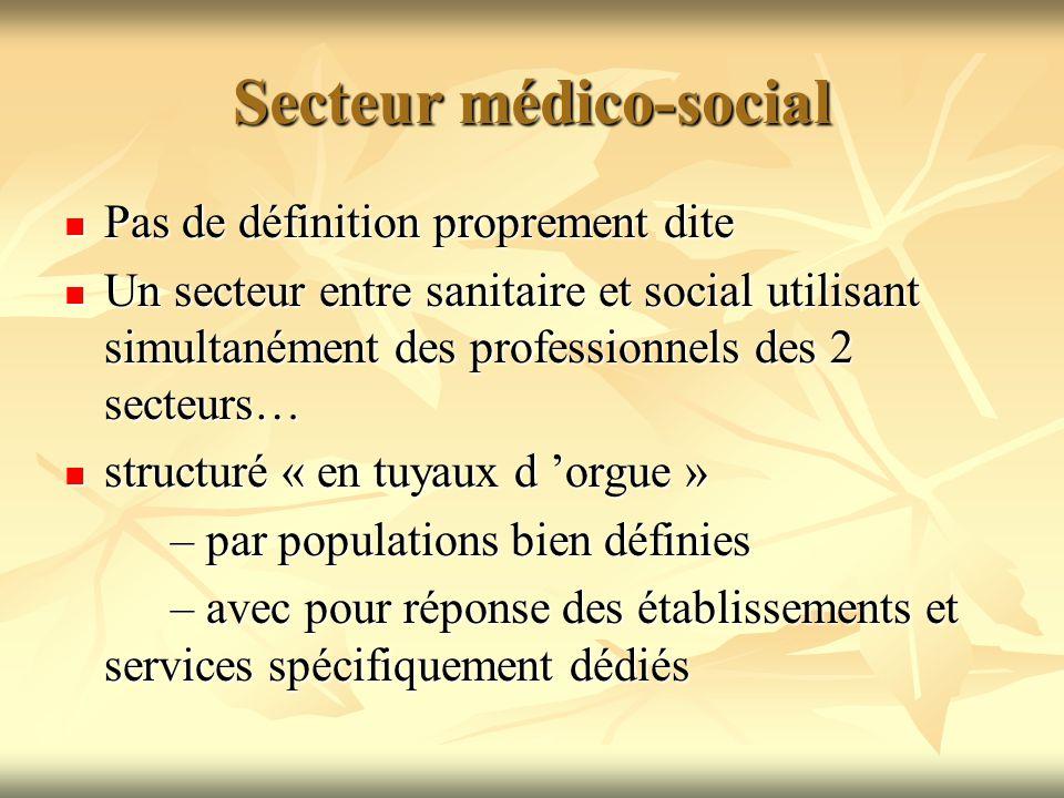 Secteur médico-social Pas de définition proprement dite Pas de définition proprement dite Un secteur entre sanitaire et social utilisant simultanément