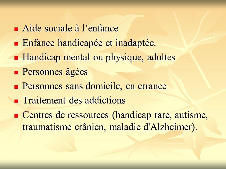 Aide sociale à lenfance Aide sociale à lenfance Enfance handicapée et inadaptée. Enfance handicapée et inadaptée. Handicap mental ou physique, adultes