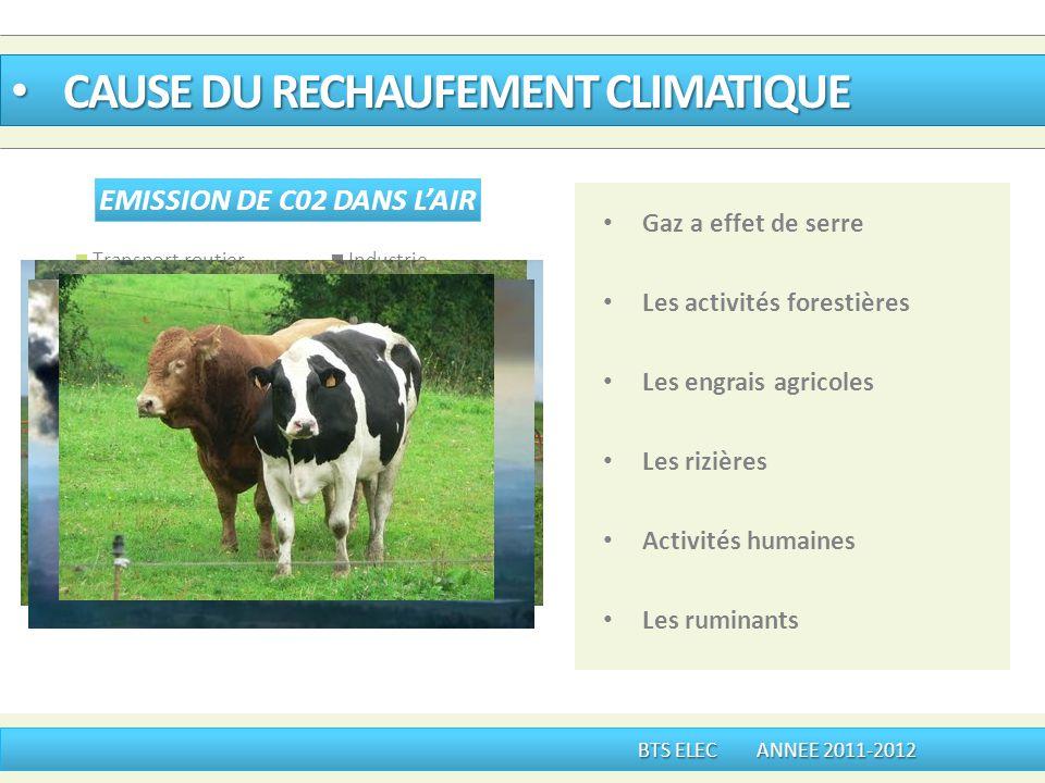 Gaz a effet de serre Les activités forestières Les engrais agricoles Les rizières Activités humaines Les ruminants CAUSE DU RECHAUFEMENT CLIMATIQUE CA