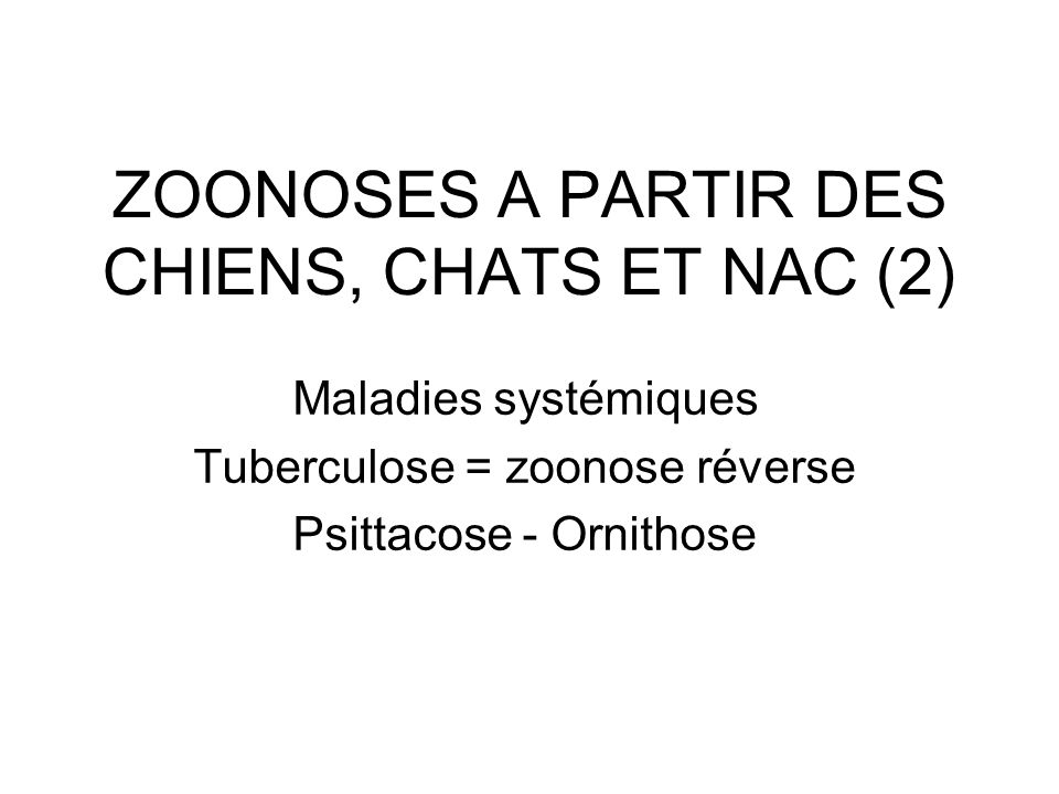 ZOONOSES A PARTIR DES CHIENS, CHATS ET NAC (2) Maladies systémiques Tuberculose = zoonose réverse Psittacose - Ornithose