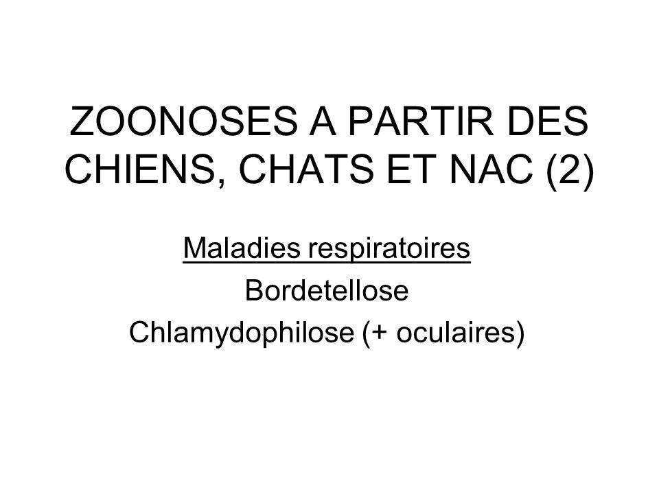 ZOONOSES A PARTIR DES CHIENS, CHATS ET NAC (2) Maladies respiratoires Bordetellose Chlamydophilose (+ oculaires)