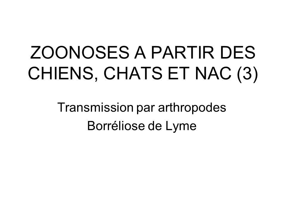 ZOONOSES A PARTIR DES CHIENS, CHATS ET NAC (3) Transmission par arthropodes Borréliose de Lyme