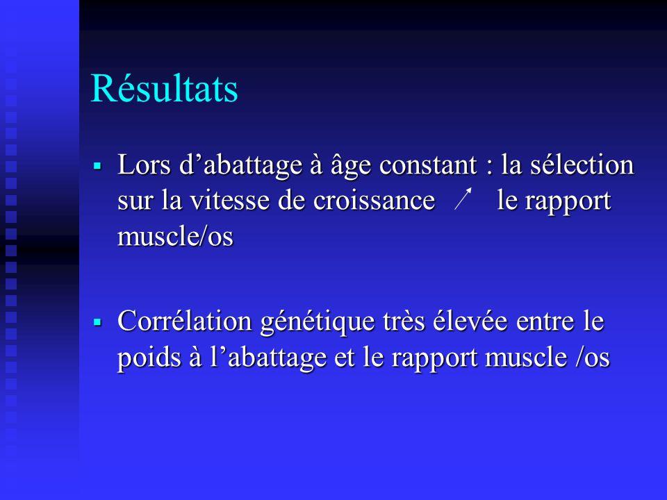 Résultats Lors dabattage à âge constant : la sélection sur la vitesse de croissance le rapport muscle/os Lors dabattage à âge constant : la sélection