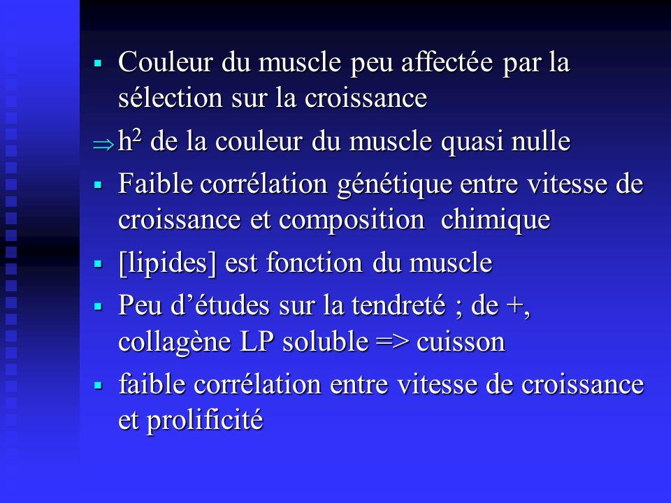 Couleur du muscle peu affectée par la sélection sur la croissance Couleur du muscle peu affectée par la sélection sur la croissance h 2 de la couleur