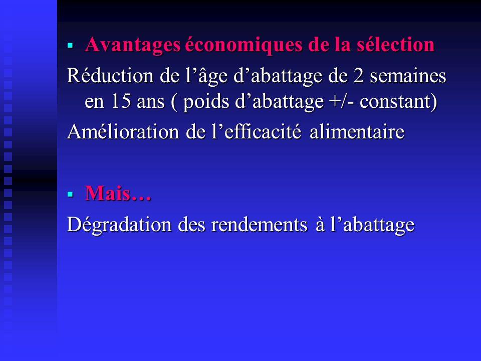 Avantages économiques de la sélection Avantages économiques de la sélection Réduction de lâge dabattage de 2 semaines en 15 ans ( poids dabattage +/-