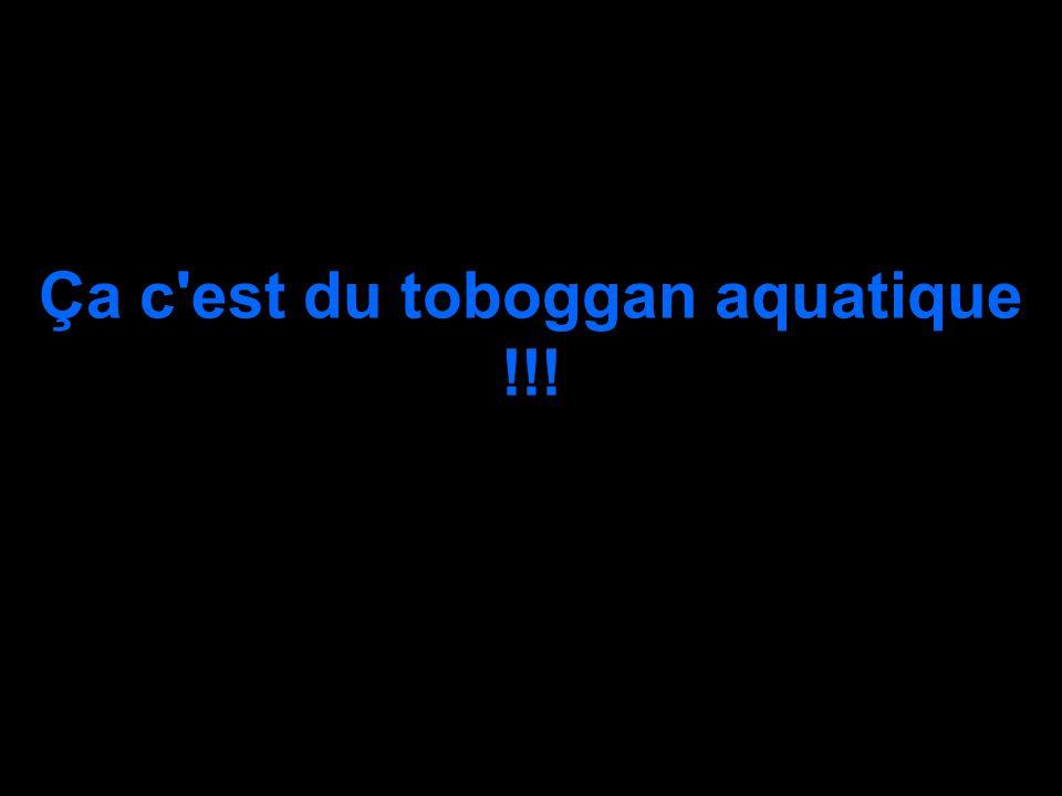 Ça c'est du toboggan aquatique !!!