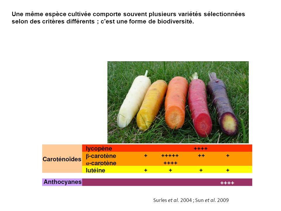 Une même espèce cultivée comporte souvent plusieurs variétés sélectionnées selon des critères différents ; c'est une forme de biodiversité. Surles et
