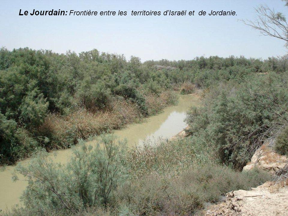Le mont Nébo. Site présumé du tombeau de Moïse Cest une étape pour les voyageurs en terre sainte. Le mont jouit dun panorama somptueux