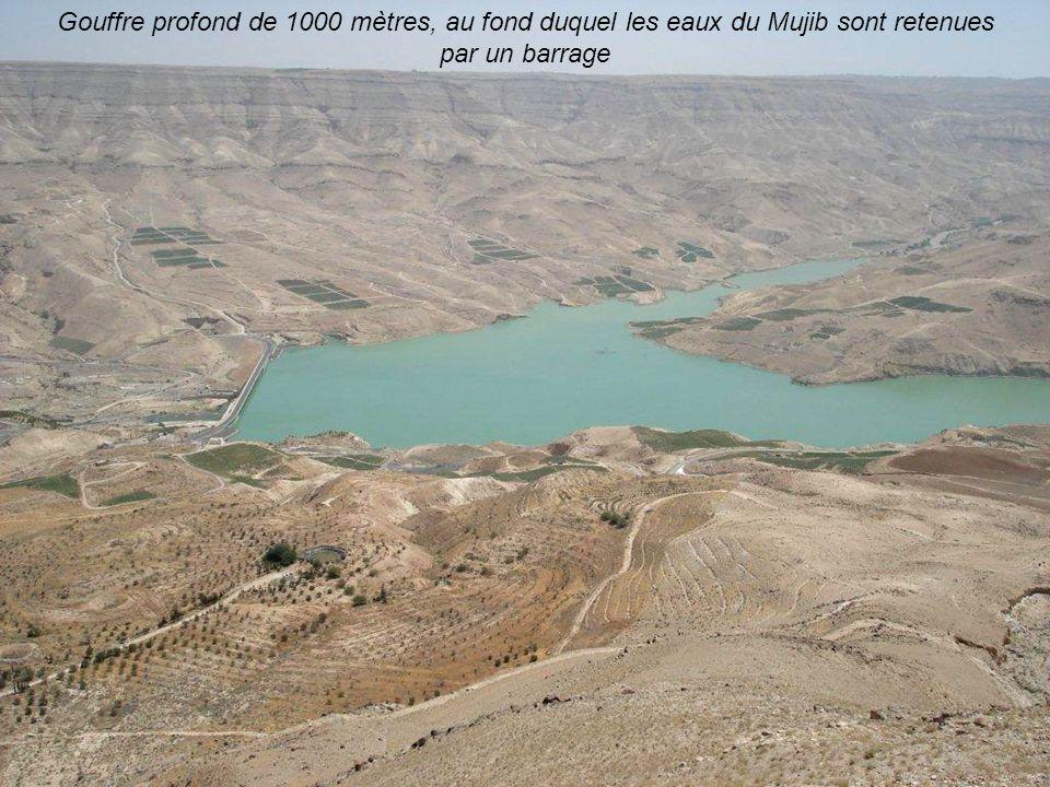 La route des Rois : avec quelques uns des plus beaux paysages de Jordanie