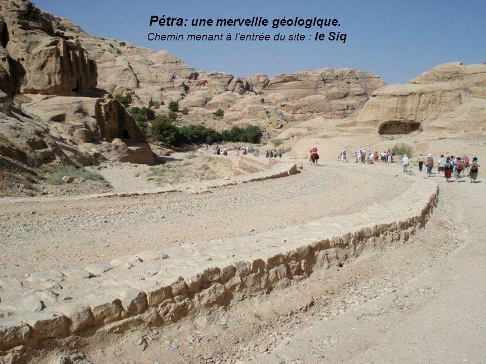 le château de Kérak : mystérieux dédale de murailles voutées et de passages interminables. Il reste un impressionnant témoignage du génie militaire et