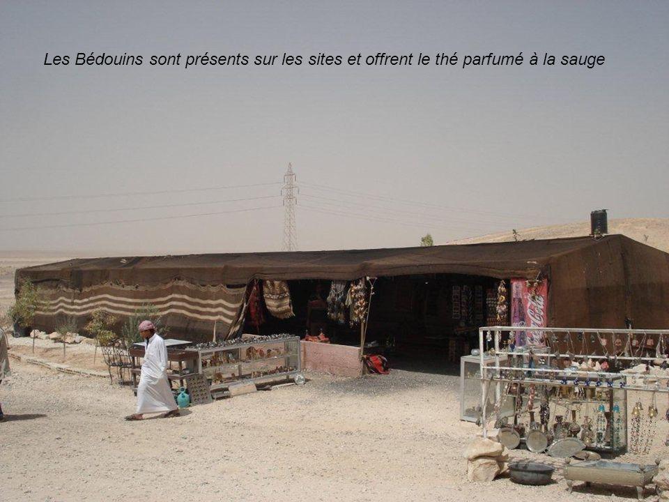 Les Bédouins sont présents sur les sites et offrent le thé parfumé à la sauge