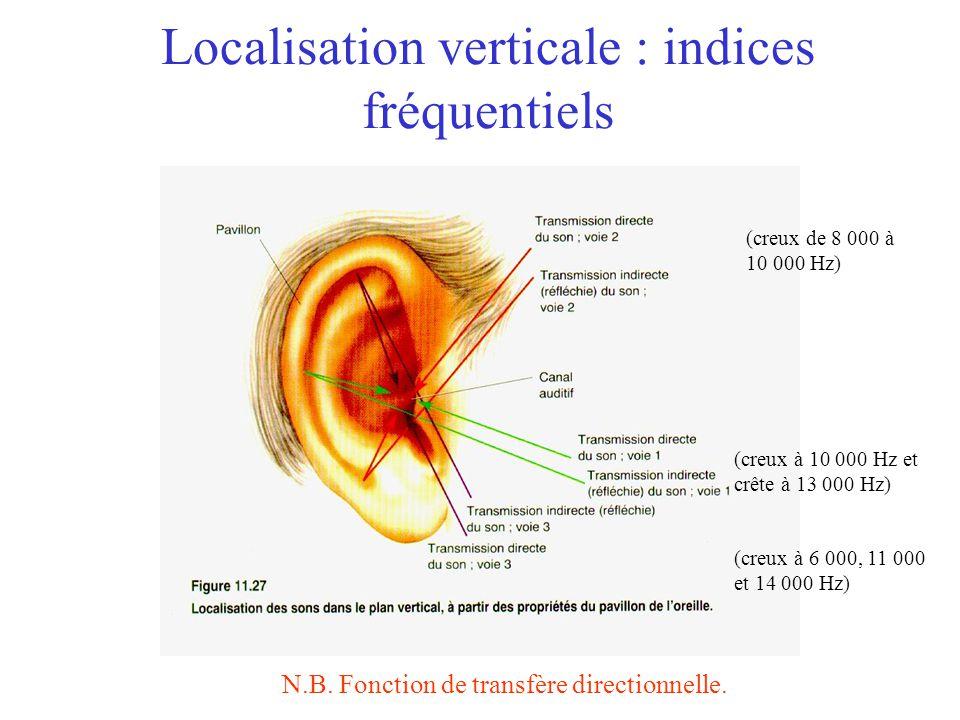 Localisation sonore Horizontale –Indices binauraux Délai interaural Différence dintensité interaurale Verticale –Indices (monoraux) spectraux Fonction de transfère directionnelle Distance