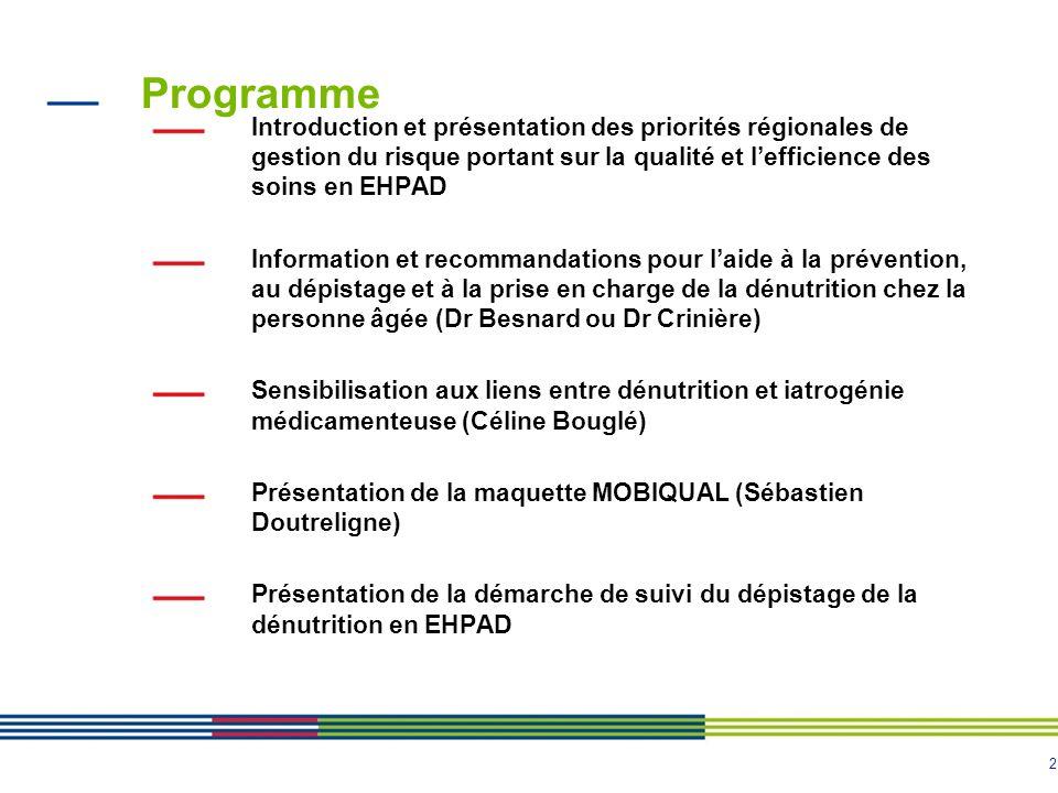 2 Programme Introduction et présentation des priorités régionales de gestion du risque portant sur la qualité et lefficience des soins en EHPAD Inform