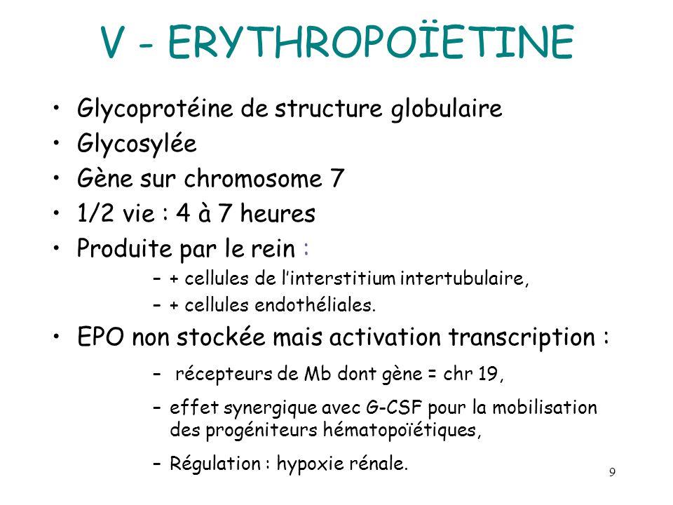 9 V - ERYTHROPOÏETINE Glycoprotéine de structure globulaire Glycosylée Gène sur chromosome 7 1/2 vie : 4 à 7 heures Produite par le rein : –+ cellules