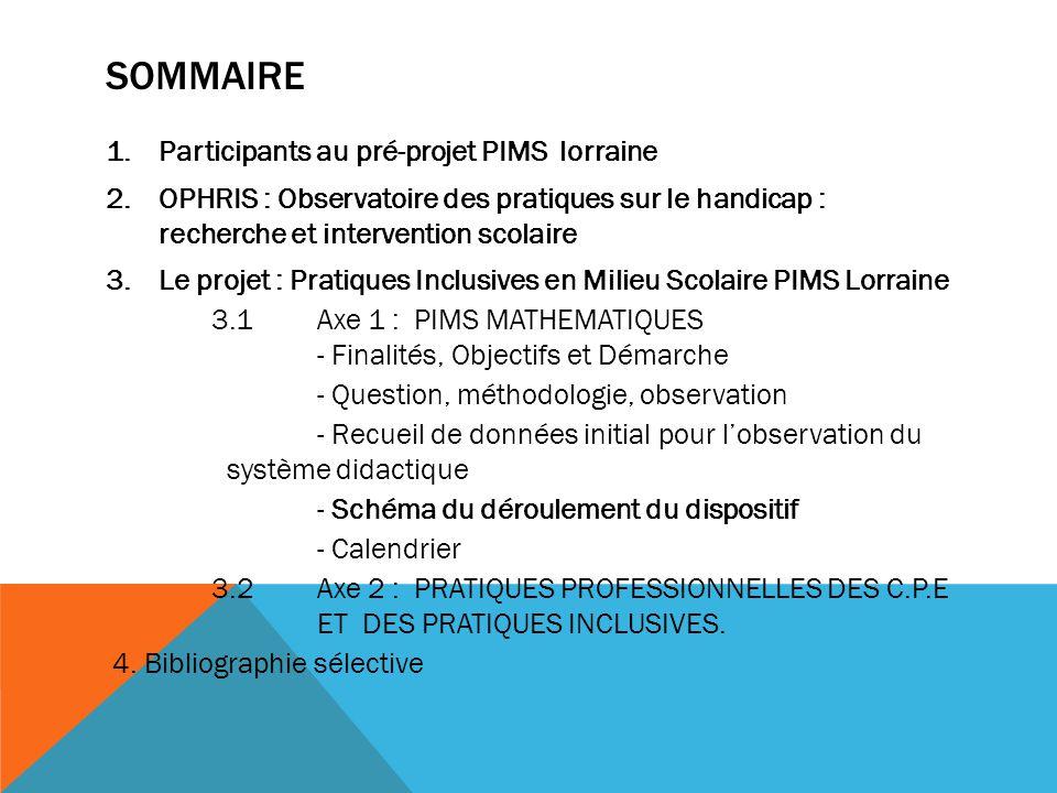 SOMMAIRE 1.Participants au pré-projet PIMS lorraine 2.OPHRIS : Observatoire des pratiques sur le handicap : recherche et intervention scolaire 3.Le pr