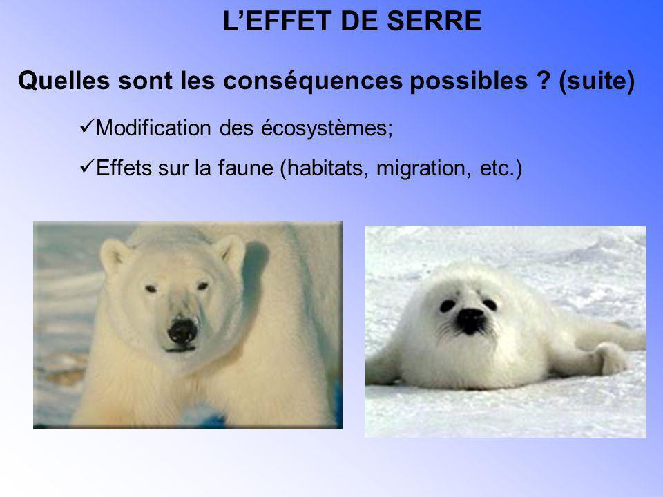 Modification des écosystèmes; Effets sur la faune (habitats, migration, etc.) Quelles sont les conséquences possibles ? (suite) LEFFET DE SERRE