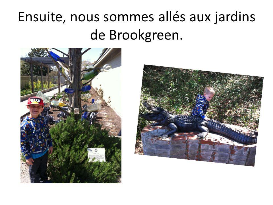 Ensuite, nous sommes allés aux jardins de Brookgreen.