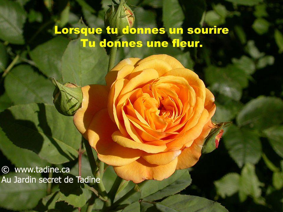 Nous avons tous un jardin dAmour; Et dans ce jardin, il y a toujours des fleurs.