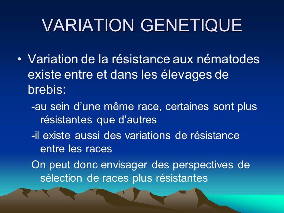 VARIATION GENETIQUE Variation de la résistance aux nématodes existe entre et dans les élevages de brebis: -au sein dune même race, certaines sont plus