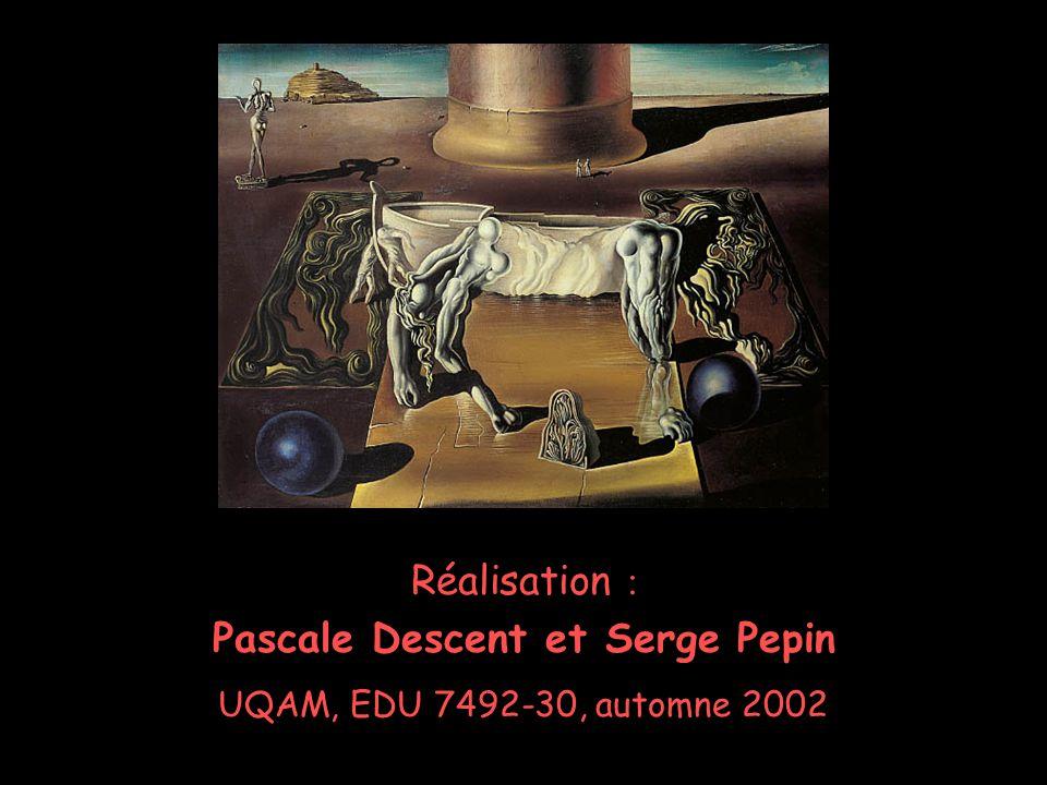 Pascale Descent Serge Pepin 14 Réalisation : Pascale Descent et Serge Pepin UQAM, EDU 7492-30, automne 2002