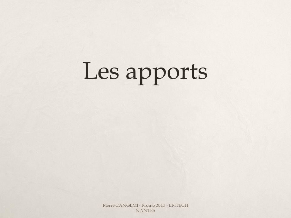 Les apports Pierre CANGEMI - Promo 2013 - EPITECH NANTES