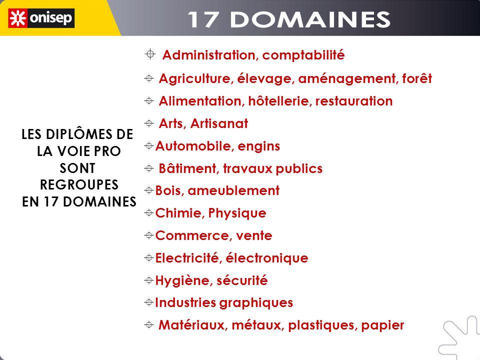 LES DIPLÔMES DE LA VOIE PRO SONT REGROUPES EN 17 DOMAINES LES DIPLÔMES DE LA VOIE PRO SONT REGROUPES EN 17 DOMAINES Administration, comptabilité Agric
