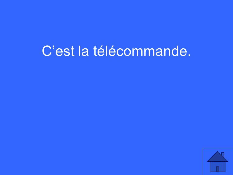 Cest la télécommande.