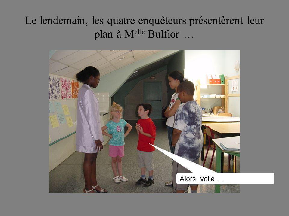 Le lendemain, les quatre enquêteurs présentèrent leur plan à M elle Bulfior … Alors, voilà …