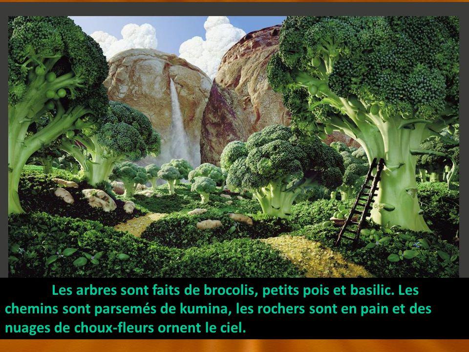 Les arbres sont faits de brocolis, petits pois et basilic.