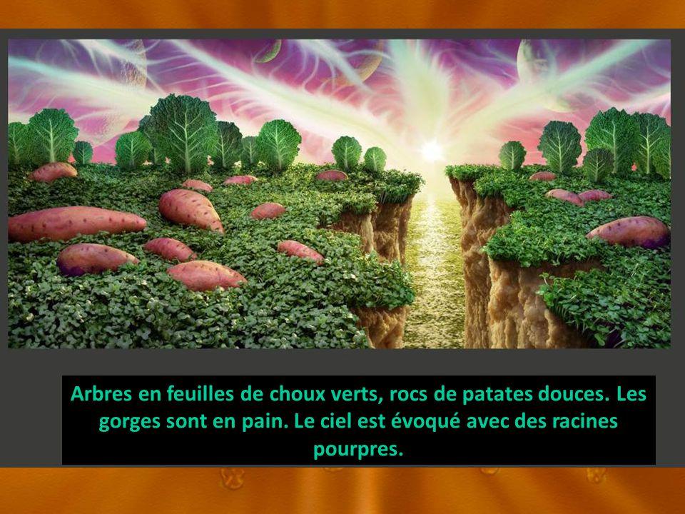Arbres en feuilles de choux verts, rocs de patates douces. Les gorges sont en pain. Le ciel est évoqué avec des racines pourpres.