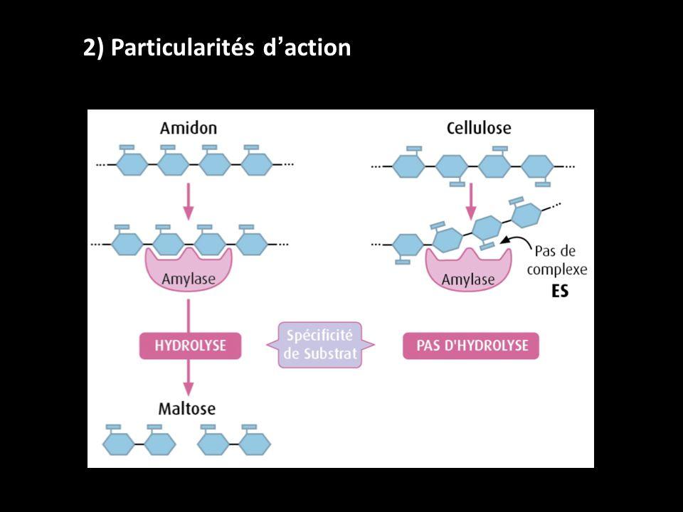 2) Particularités daction